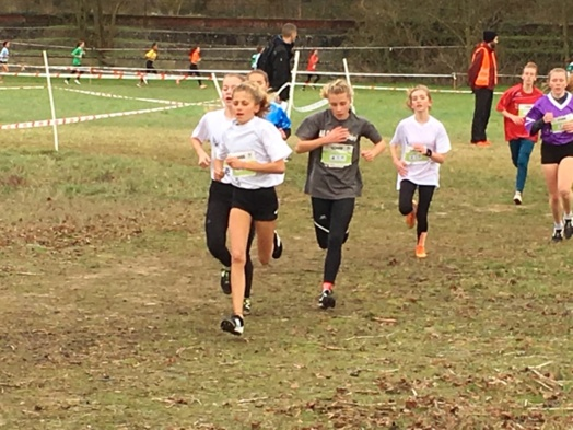 Championnats académiques de cross country du 05/12/2018